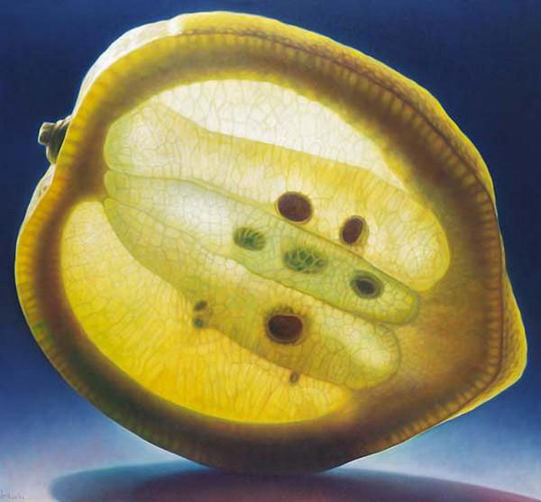 translucent oil paintings of fruit by Dennis Wojtkiewicz (6)