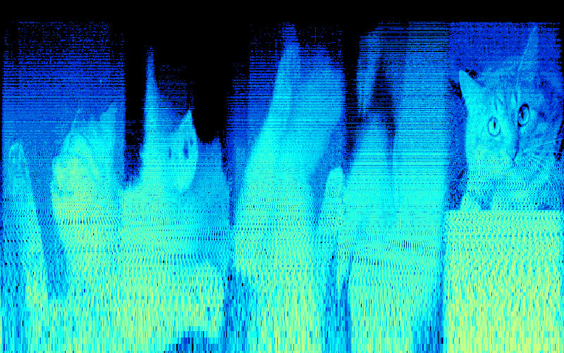 venetian_snares_look_songs-about-my-cats-hidden-secret-image-embedded in music spectrograpm