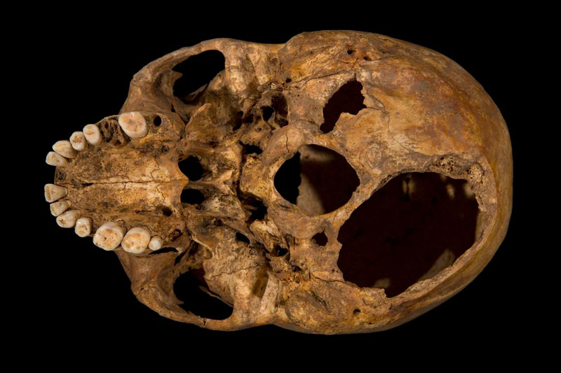 how the university of leicester found the skeleton of