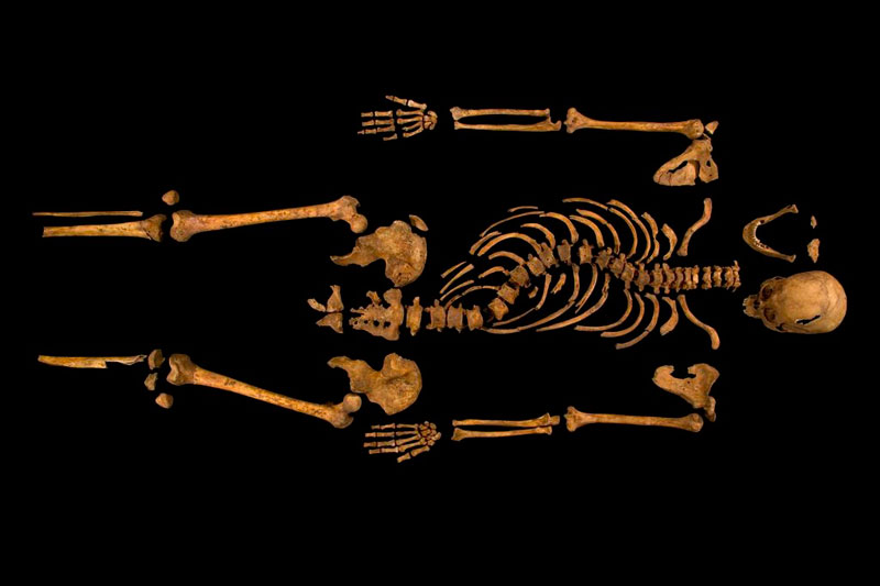 ing richard iii skeleton bones body found university of leicester 22 Revealing the Contents of a 100 year old Time Capsule