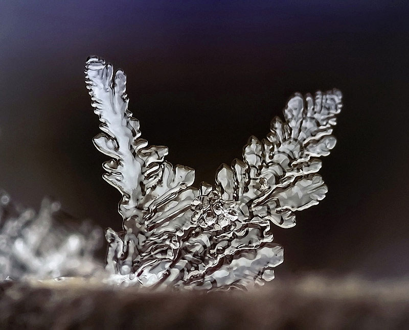 macro photograph of a snowflake by andrew osokin (4)