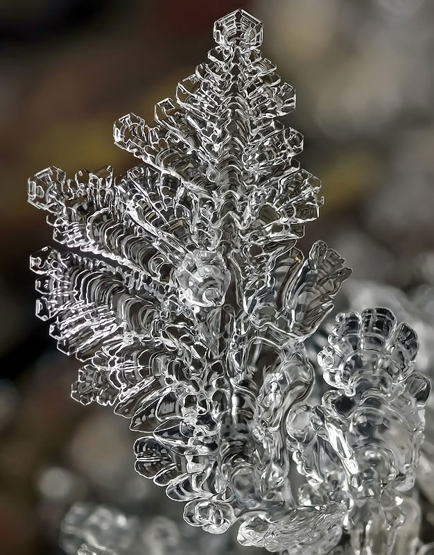 macro photograph of a snowflake by andrew osokin (8)