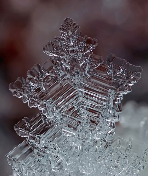macro photograph of a snowflake by andrew osokin (9)