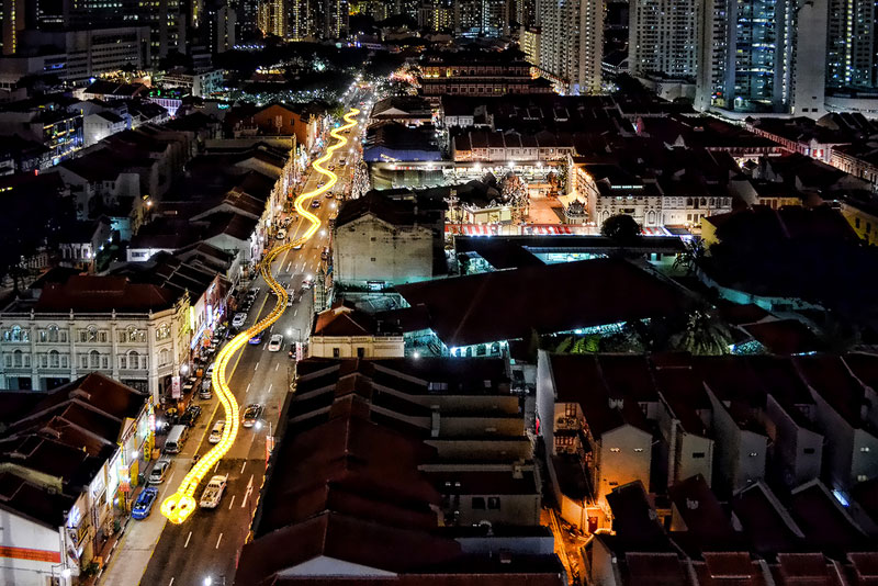 Picture of the Day: Singapore SnakeLantern