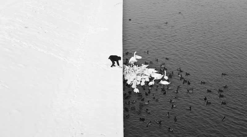 http://twistedsifter.com/2013/02/winter-contrast-in-krakow-black-white/