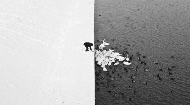 winter-Contrast in Krakow