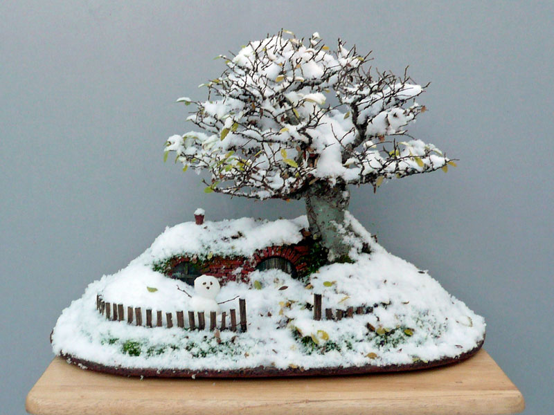 bonsai baggins hobbit home by chris guise (2)