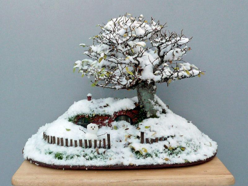 bonsai baggins hobbit home by chris guise (2)