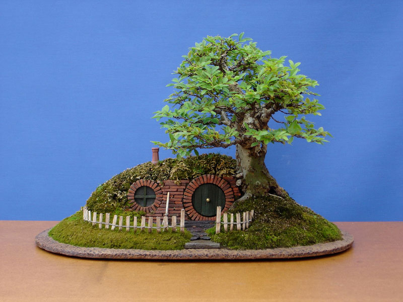 bonsai baggins hobbit home by chris guise (8)