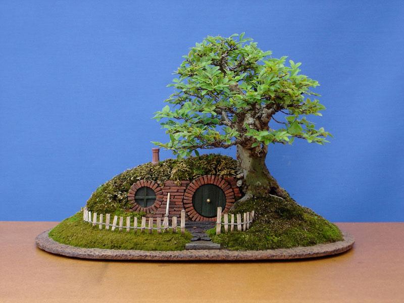 bonsai baggins hobbit home by chris guise (8)