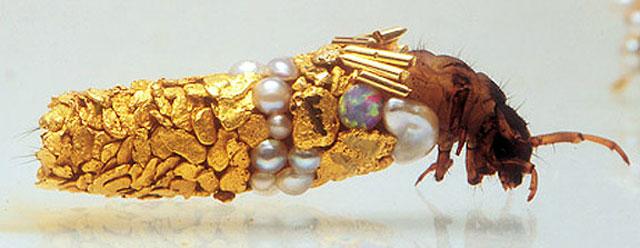 caddisfly-larvae-art-gold-case-hubert-duprat-(1)