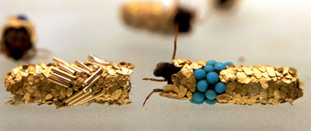 caddisfly-larvae-art-gold-case-hubert-duprat-(3)