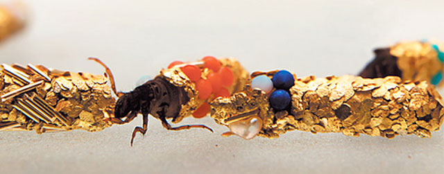 caddisfly-larvae-art-gold-case-hubert-duprat-(4)