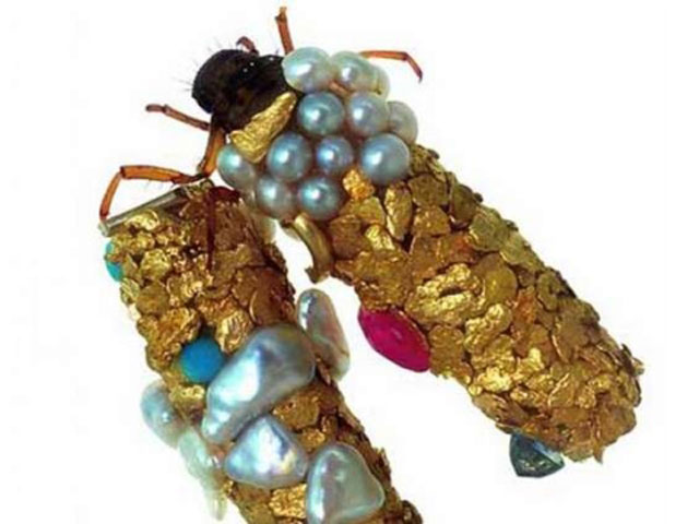 caddisfly-larvae-art-gold-case-hubert-duprat-(5)