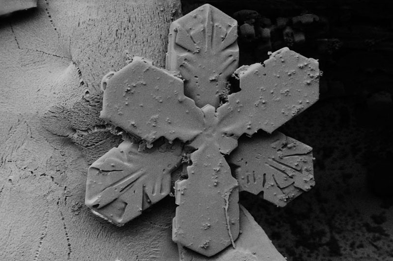 Hexagonal-snow-crystal-with-broad-branches,-composed-of-2-offset-3-branched-snow-crystals