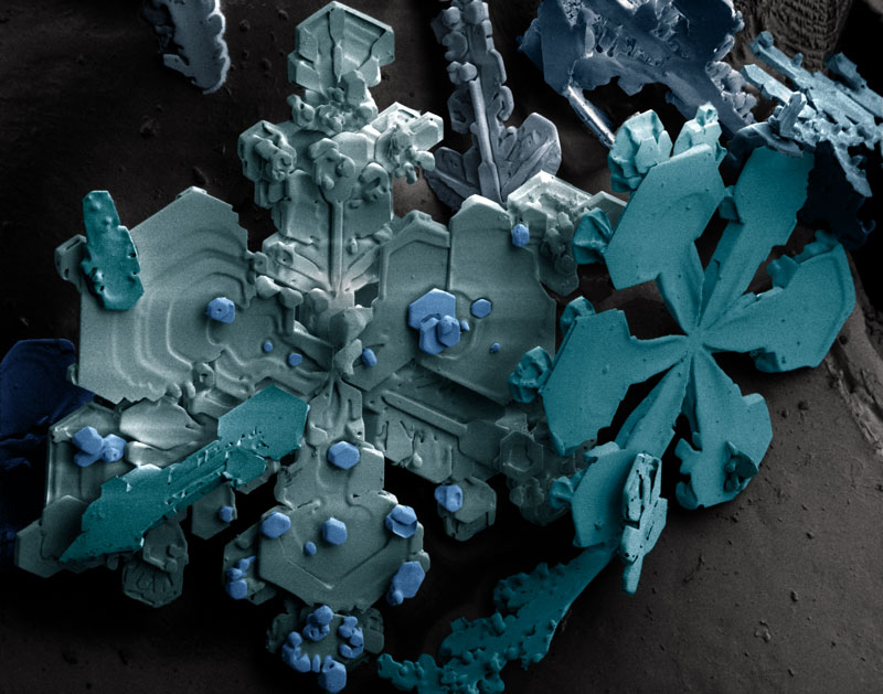 25 Microscopic Images of SnowCrystals
