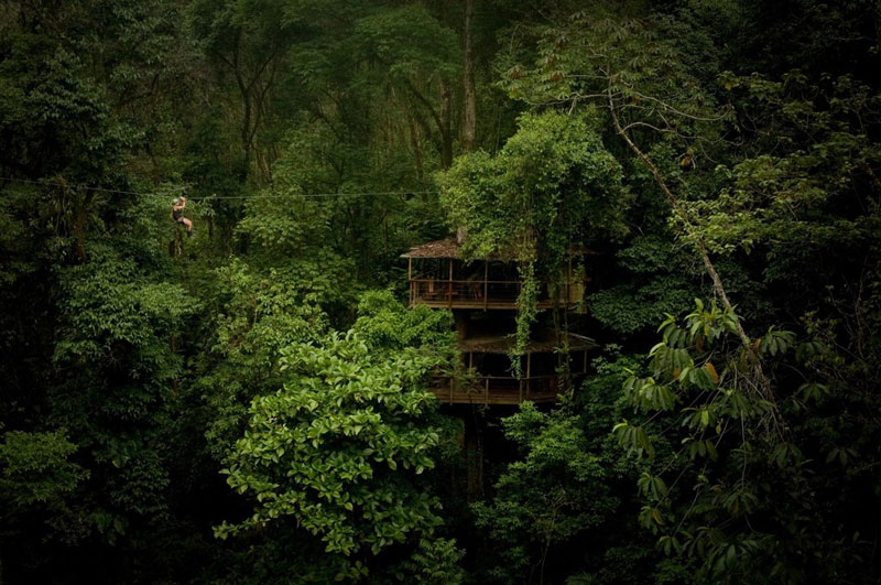 treehouse resort in costa rica finca bellavista 1 You Can Now Stay at an Underwater Hotel Room and Sleep with the Fishes