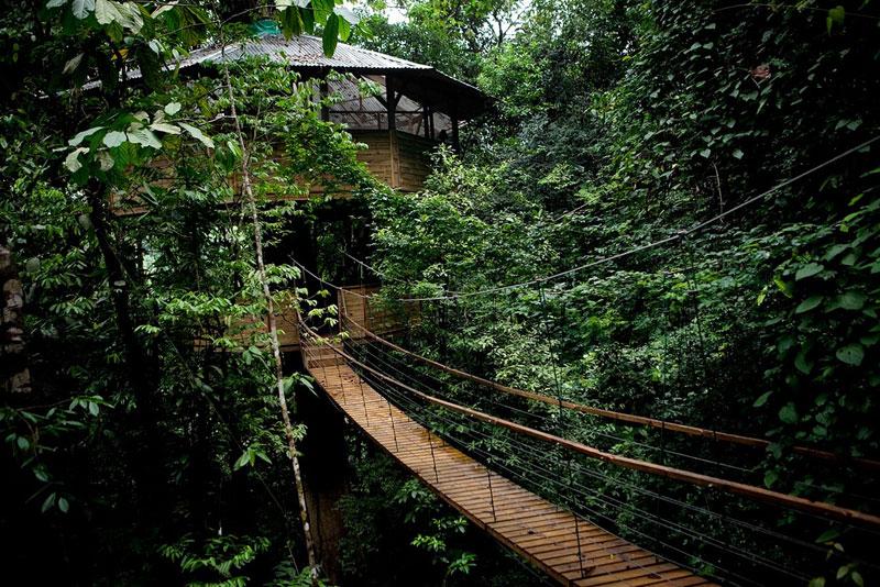 treehouse resort in costa rica finca bellavista (13)