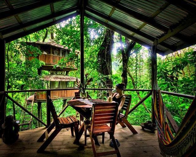 treehouse resort in costa rica finca bellavista (17)
