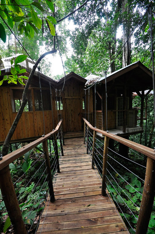 This couple built a real life ewok village in costa rica for Tree house for sale costa rica