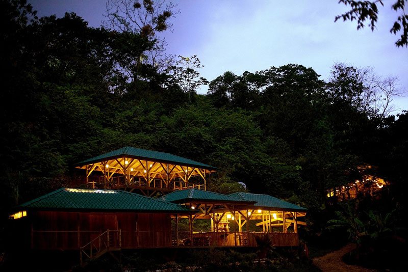 treehouse resort in costa rica finca bellavista (7)