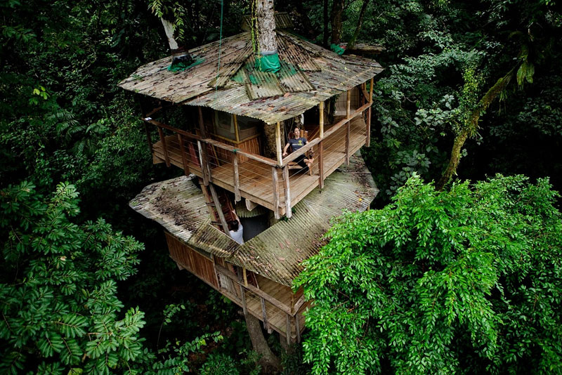This couple built a real life ewok village in costa rica for Houses built in trees