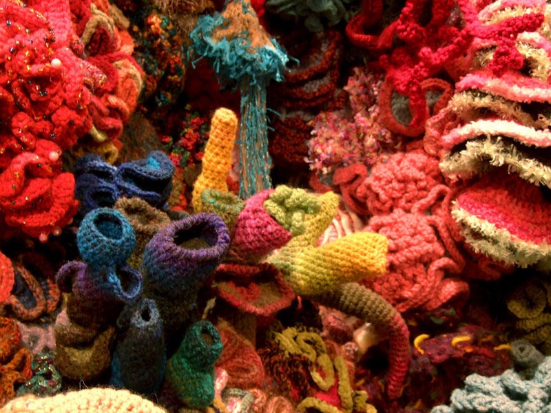 crocheted coral reefs (13)