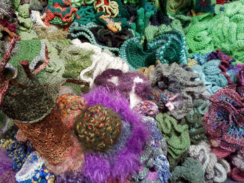 crocheted coral reefs (6)