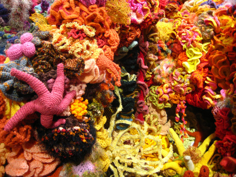 crocheted coral reefs (7)
