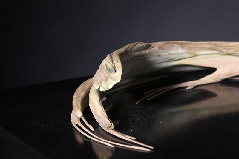 jonty hurwitz anamorphic sculpture kiss of chytrid (1)