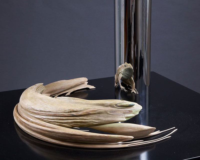 jonty hurwitz anamorphic sculpture kiss of chytrid (3)