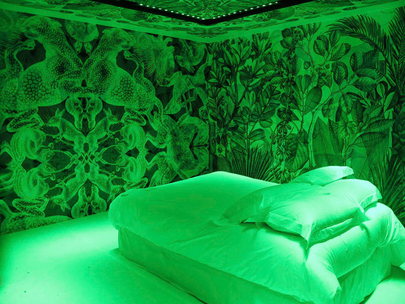 carnovsky dreambox maison and objet 2012 rgb mural (3)