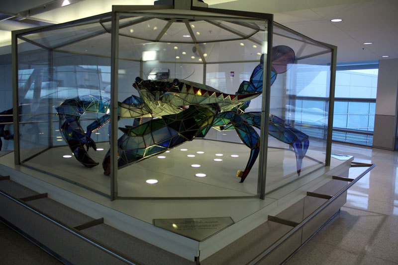 stained glass blue crab baltimore-washington international jackie leatherbury douglass callinectes douglassi (2)