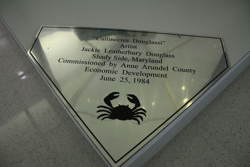 stained glass blue crab baltimore-washington international jackie leatherbury douglass callinectes douglassi (3)