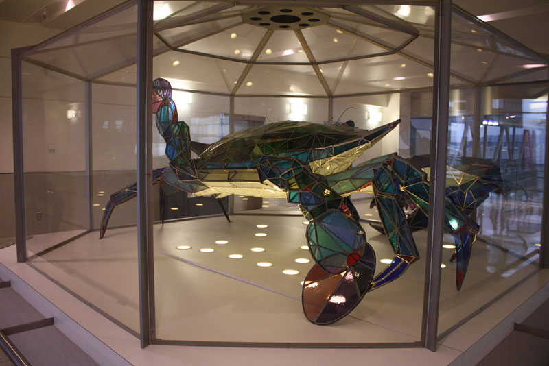stained glass blue crab baltimore-washington international jackie leatherbury douglass callinectes douglassi (4)
