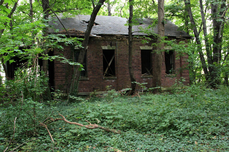 abandoned island new york city north brother island (12)