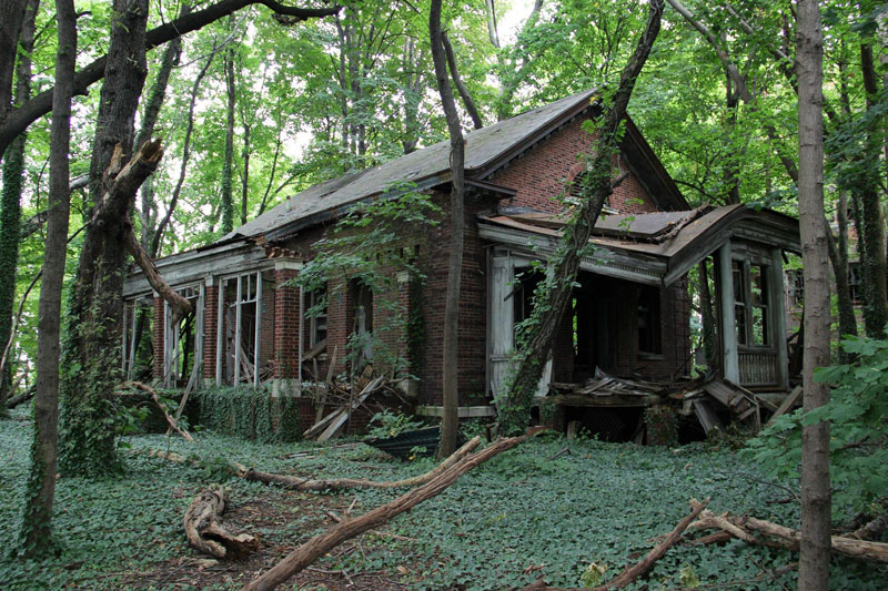 abandoned island new york city north brother island 2 An Abandoned House Overtaken by Animals