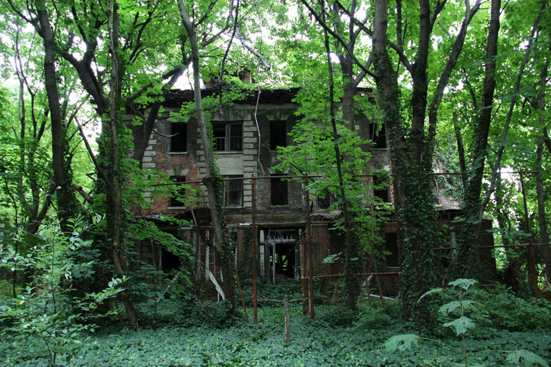abandoned island new york city north brother island (3)