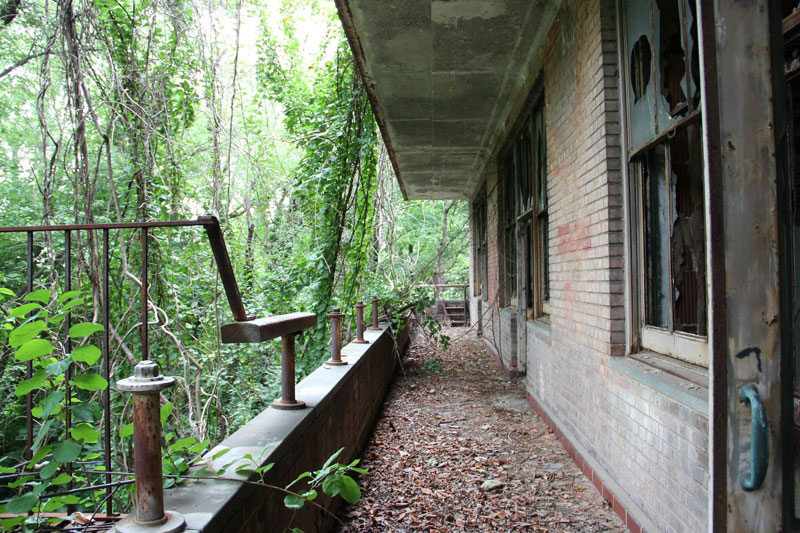 abandoned island new york city north brother island (7)