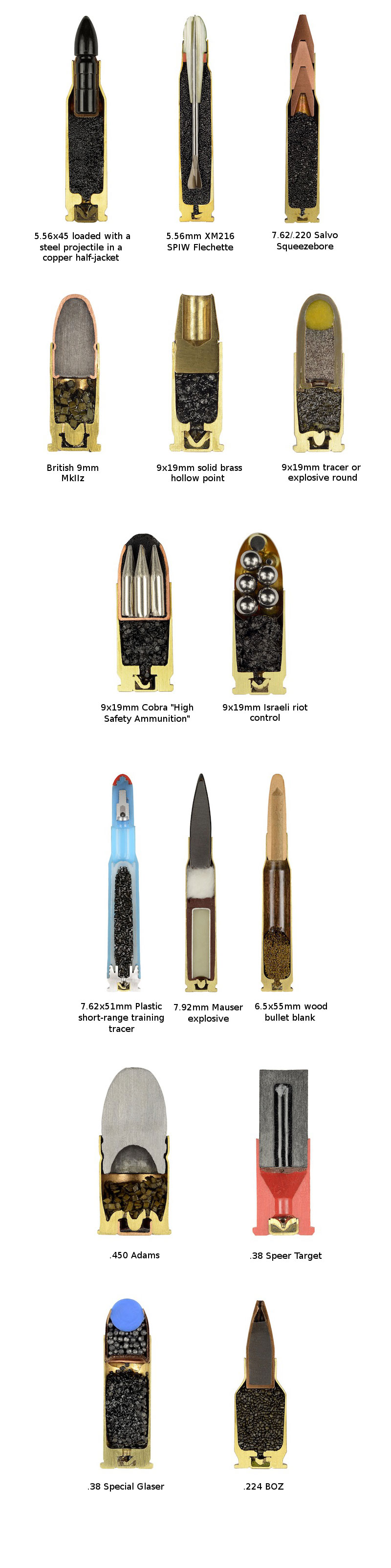 cross-sections-of-ammo-sabine-pearlman-(7)