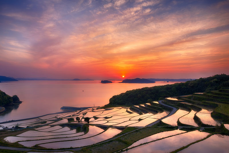 Picture of the day rice terrace sunset twistedsifter for Terrace nature