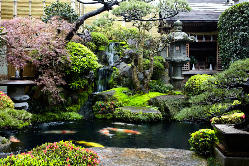 garden behind shop cookie factory miyajima island japan Picture of the Day: Backyard Garden in Japan