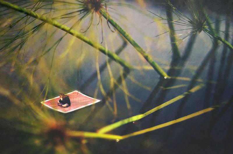 miniature world photo manipulations by fiddle oak zev nellie (12)