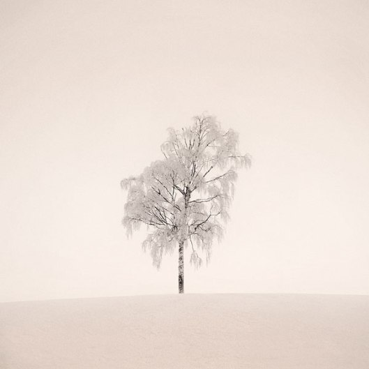 portraits of solitude by Mikko Lagerstedt (1)