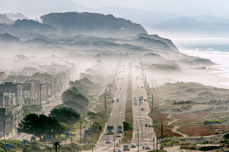 Picture of the Day: San FranciscoFog