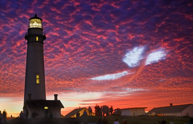 sky-whale-pigeon-point