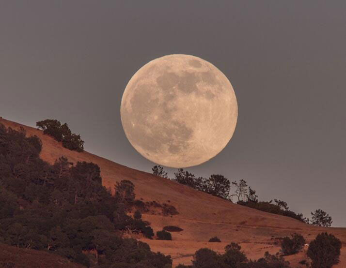The 2013 Supermoon in Photos