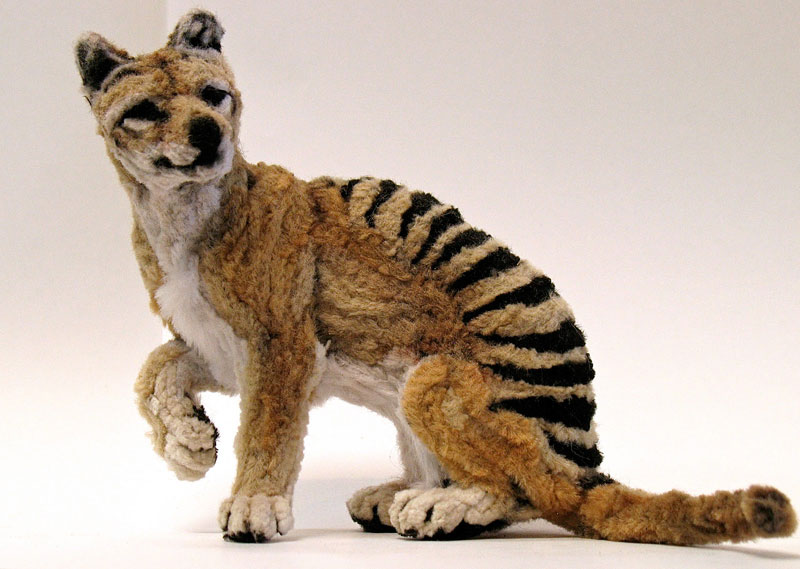 thylacine made from pipe cleaner chenille stem by lauren ryan (1)