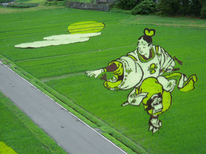 tanbo japanese rice field art (11)