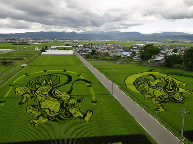 tanbo japanese rice field art (12)